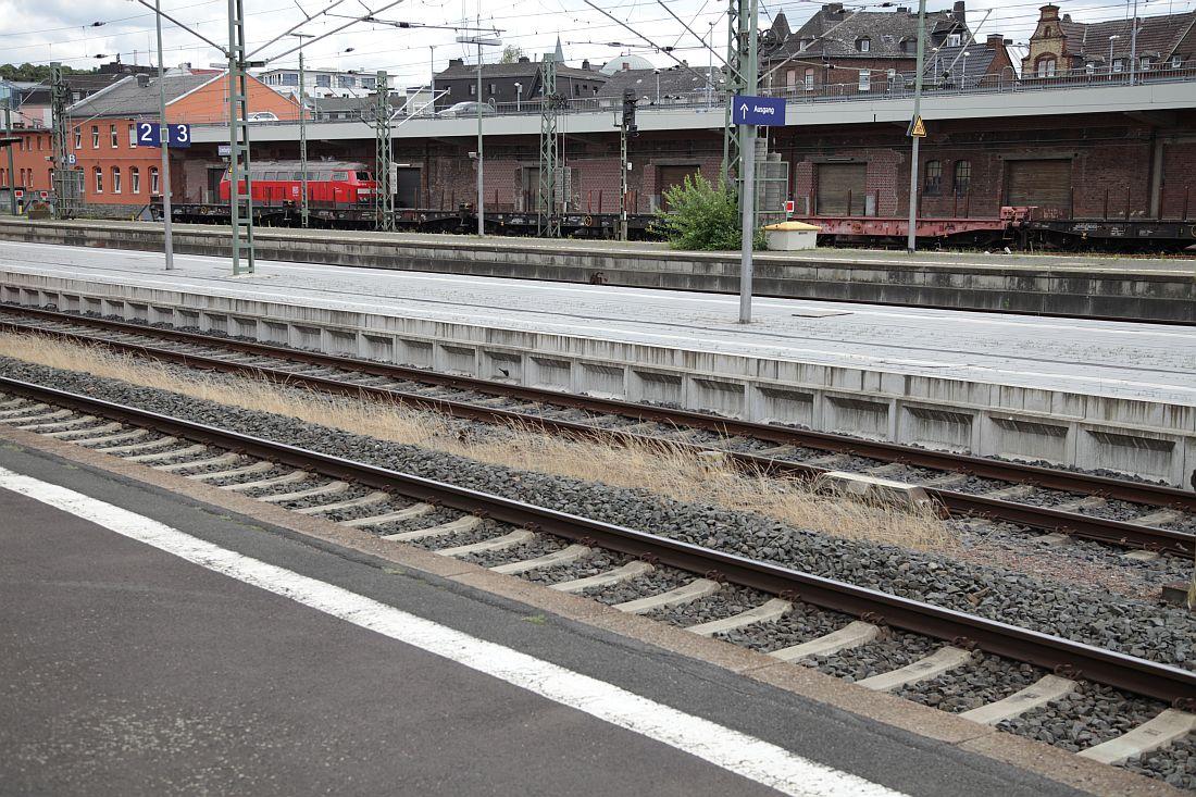 http://www.desiro.net/bilder/D-Reise2020-98.jpg