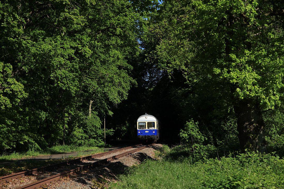 http://www.desiro.net/bilder/Kaffkieker1.jpg