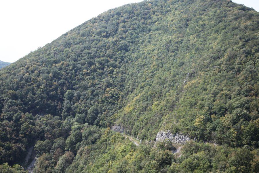 http://www.desiro.net/bilder/RO-Anina-21.jpg
